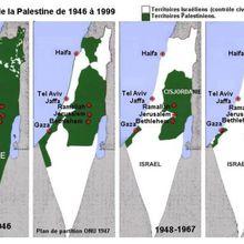 La Palestine à l'ONU, pourquoi faire ? (Julien Salingue)