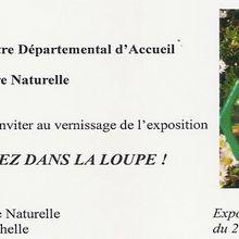 Entrez dans la loupe (MRAP La Rochelle)