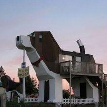 casa a forma di cane