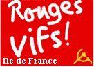 La grève des CHEMINOTS : UNE LUTTE pour l'intérêt général , CONTRE les exigences du CAPITAL, trahie par les mécanismes INSTITUTIONNELS ! (Rouges Vifs Cheminots IDF)
