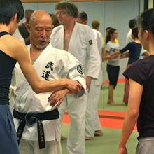 Vidéo Master Class Hino Akira avril 2014, 2ème partie