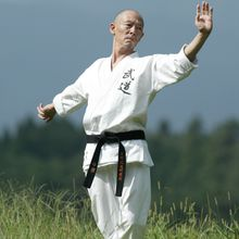 28 et 29 mai, Master Class Hino Akira à Paris
