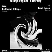 Stage Guillaume Colonge et Isseï Tamaki