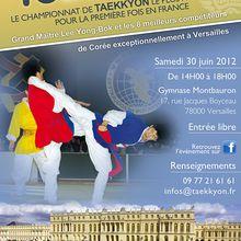 Compétition de Taekkyon, 30 juin 2012 à Versailles