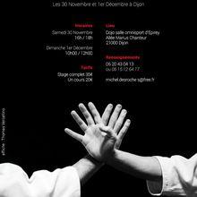 Léo Tamaki à Dijon, 30 novembre et 1er décembre