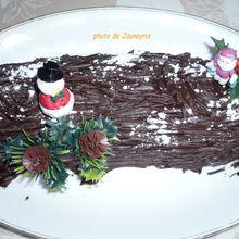 un gateau traditionnel pour Noël ou le jour de l'An : la bûche aux deux chocolats