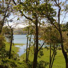 Voyage au Costa Rica.... Autour du volcan Rincon de la vieja... A la recherche de l'orchidée pourpre.