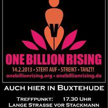 Buxtehude und Rotenburg 14.2.13 -- one Billion Rising