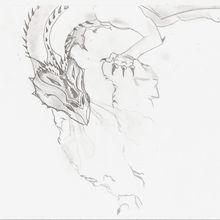 brouillon dragon