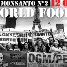 Marche contre MONSANTO - 12 octobre 2013