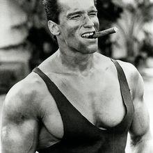 (2007) Le Gouverneur Schwarzenegger soutient la pulvérisation aérienne de produits chimiques !