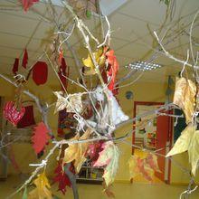 L'arbre au fil des saisons.