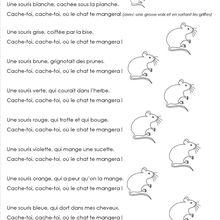 chanson : les souris multicolores.