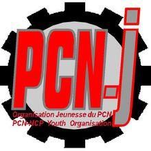 LE REVEIL DE LA JEUNESSE EUROPEENNE : LE PCN-J EN SOUTIEN DE LA JEUNESSE ESPAGNOLE EN LUTTE !
