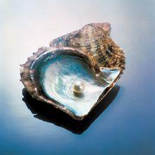 Métaphore : Le grain de sable qui devint une perle