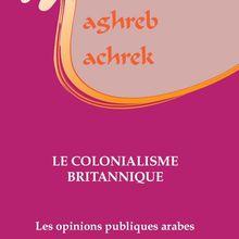 Les opinions publiques arabes comme enjeu des relations internationales (Mohamed El Oifi)