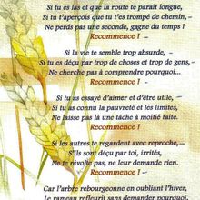 Recommence !