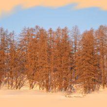 Rando haute montagne,du blanc du rouge de la glace et de l'eau 17 2 2013