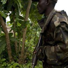 """""""Au Kivu, on viole et massacre dans le silence"""""""