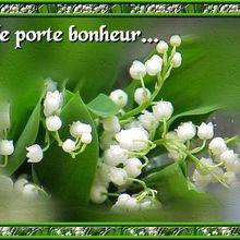 Quinté+ - Jeudi 1er Mai à Saint Cloud