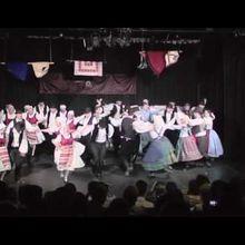 Superbes danses hongroises