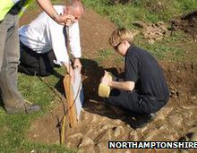 Northamptonshire Roman town site looters condemned