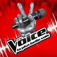 Une ex-chanteuse des L5 recalée à The Voice 2 !