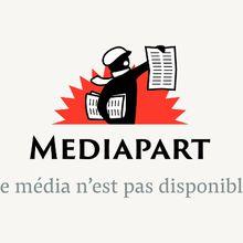 Brève missive à l'attention du chef de l'Etat sur son voyage en Algérie (Olivier Lecour Grandmaison)
