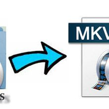 Best software to convert Video_TS to MKV lossless