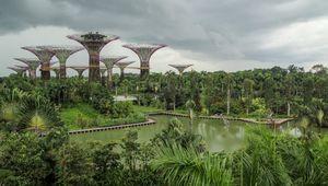 Singapour : 2 semaines de repos