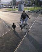 Rails et cyclistes bientôt réconciliés?
