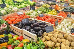 Cette étude le démontre : l'agriculture bio engendre bel et bien des bénéfices économiques