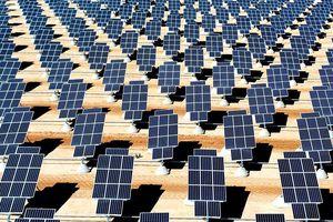 Une baisse défiant toute concurrence : les prix de l'énergie solaire ont chuté de 58 % en 5 ans