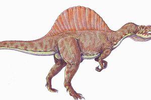 QUIZ : Saurez-vous nommer ces espèces de dinosaures ?
