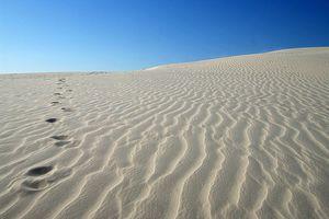 Le désert de l'autoconstruction