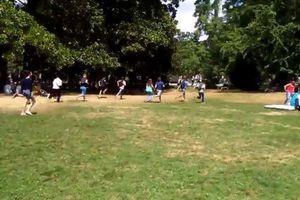Voici ce qui se passe quand un Leviator apparaît dans Pokémon Go dans un parc de Bordeaux