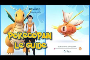 Tuto Pokemon Go | POKEMON COPAIN/BUDDY LE GUIDE | Patch 0.37 / 1.7