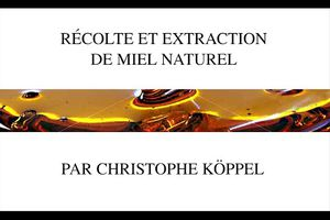 Récolte et extraction de miel naturel