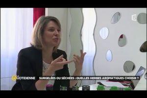 Intervention dans l'émission de France 5 : Les herbes aromatiques