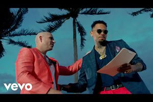 Pitbull & Chris Brown - Fun
