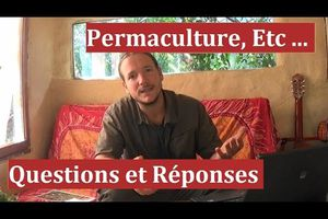 Permaculture F.A.Q.