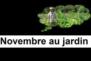 Que faire au jardin en Novembre ?
