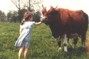 ISOLATION, de Billy O'Brien (Irlande-GB, 2006) : La Vie, la Mort, les Vaches...
