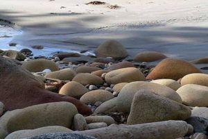 Côte Nord de la Colombie Britannique : Takush Harbour et Pruth Bay