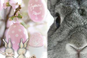 C'est bientôt Pâques !!!!!