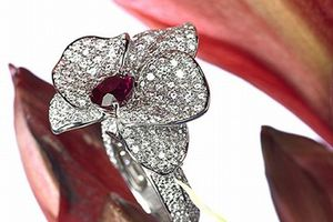 Cadeau pour une orchidophile !