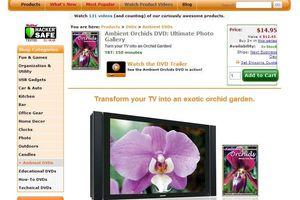 Orchids DVD