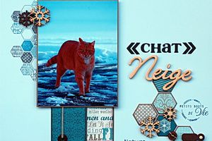 """""""Chat"""" neige..."""