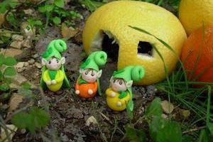 Toumilus fruit de saison 2