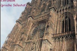 Pique-nique des blogueurs(euses) d'Alsace et environs 2013
